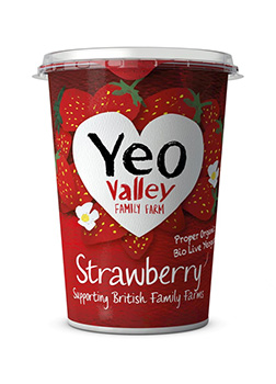Yeo Valley Organic Strawberry Yogurt 450g